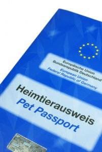 Chihuahua EU Heimtierausweis