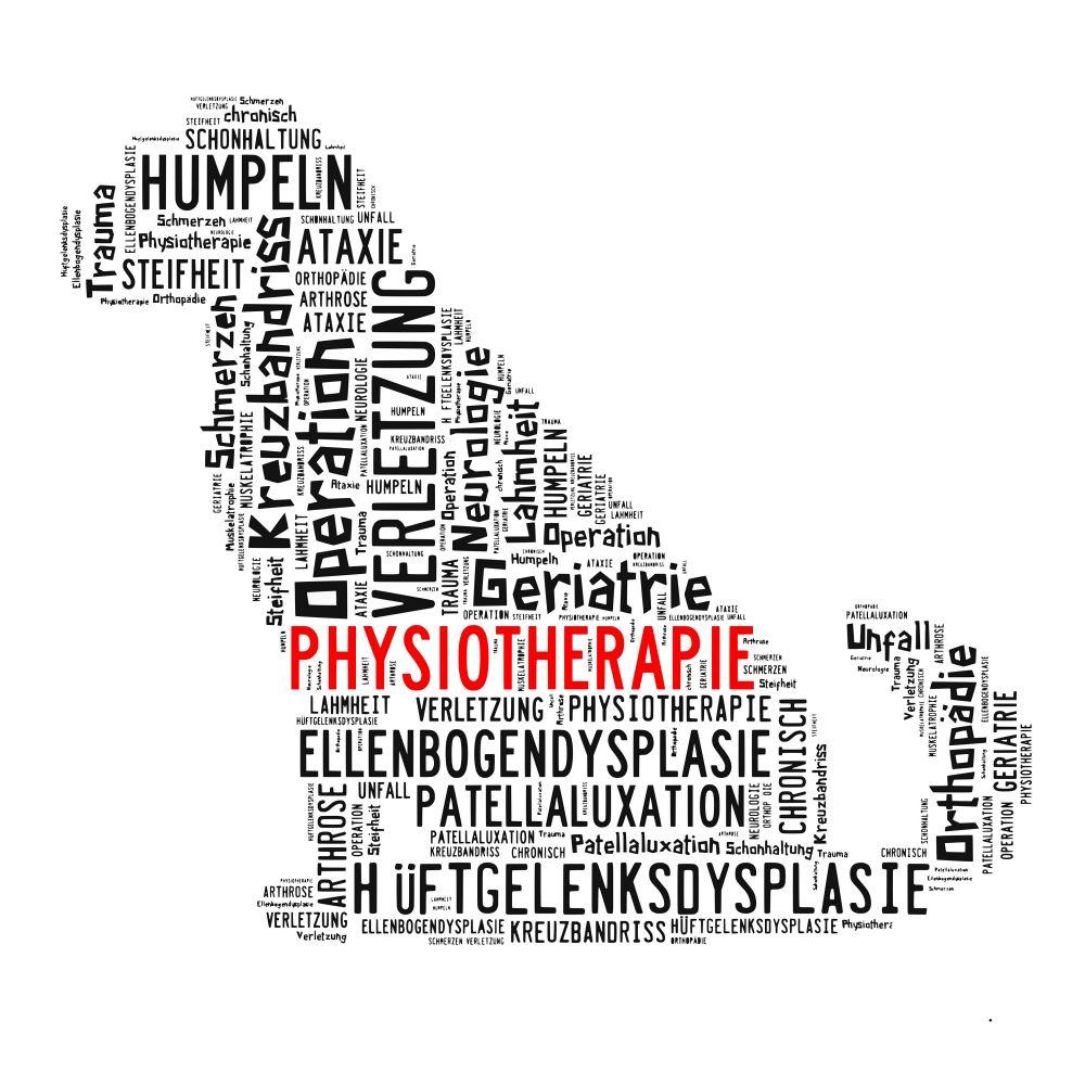 Krankheiten und Erbkrankheiten Chihuahua