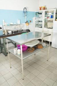 Chihuahua Tierarzt Behandlung