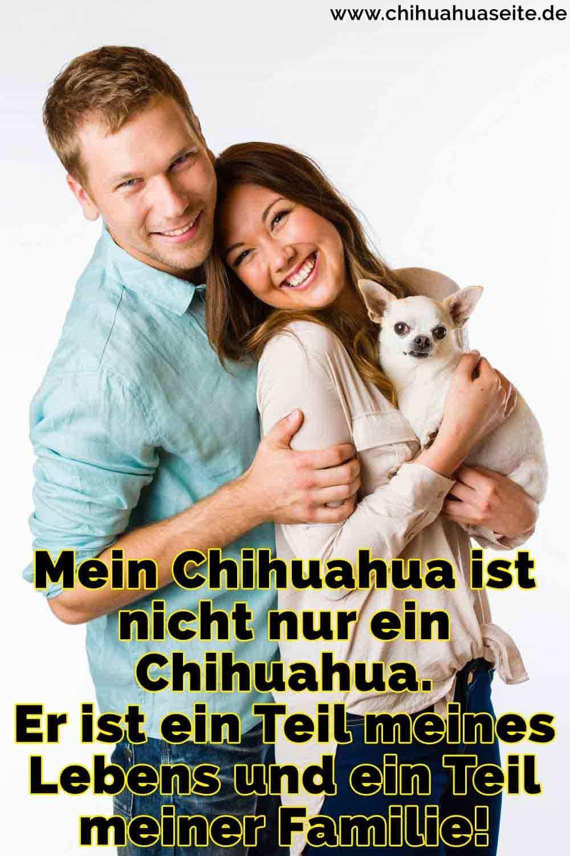 Eine Familie umarmt ihren Chihuahua