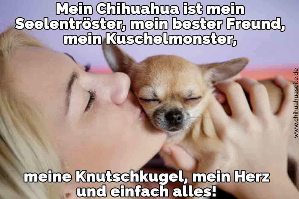 Eine Frau küsst ihr Chihuahua