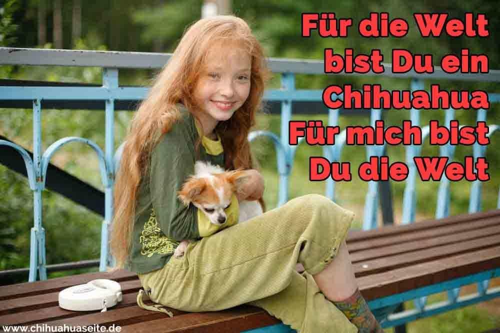 Ein Mädchen umarmt ihren Chihuahua