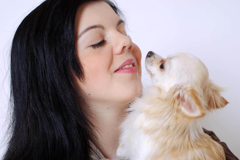 Welche Vorteile gibt es wenn ich meinen Chihuahua barfe?