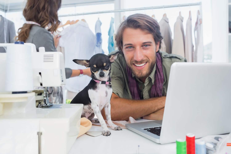 Chihuahua Anzeige erstellen