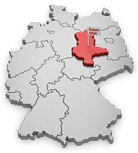 Chihuahua Züchter in Sachsen-Anhalt